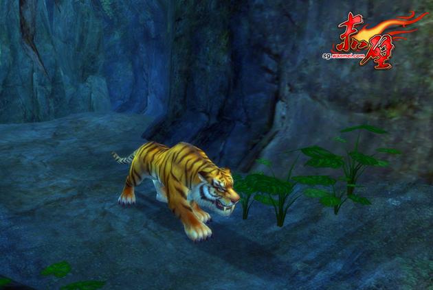图片: 图8:雨林虎王.jpg